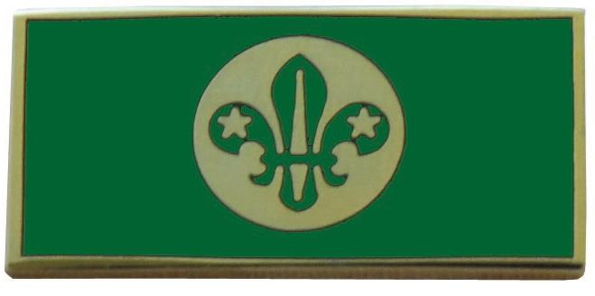 Chief Scouts Personal Award